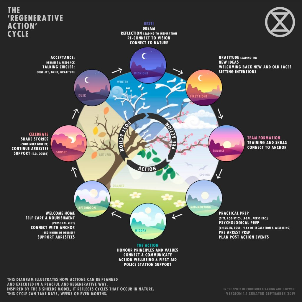infographic of the regenerative culture cycle