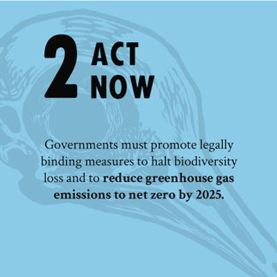 ACT NOW - Governments must promote legally binding measures to hal biodiversity loss and to reduce greenhouse gas emissions to net zero by 2025.