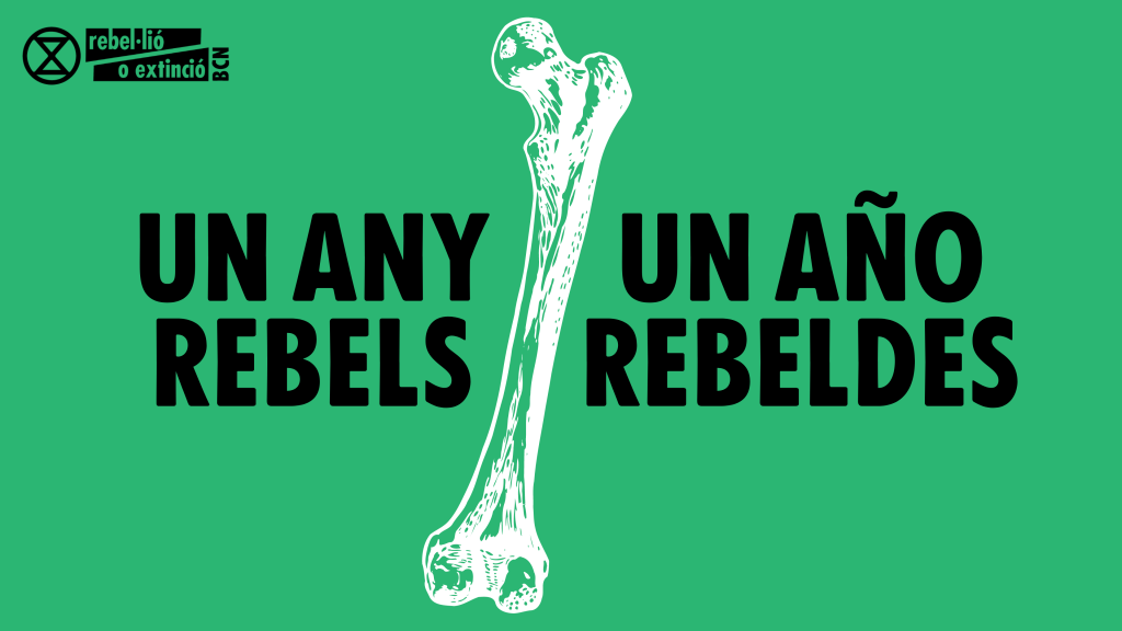 Un any rebels